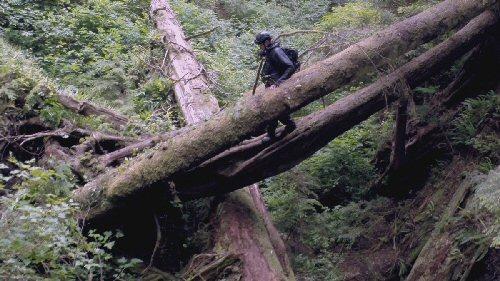 Átlagemberek túlélőképességét teszteli a NatGeo