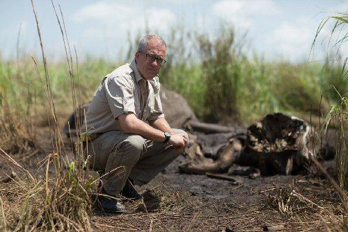 Orvvadászokat leplez le az oknyomozó riporter